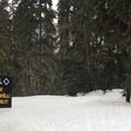 The sobering approach to The Hill.- White Pass Nordic Center