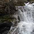 A small waterfall on Rocky Run.- Mount Margaret
