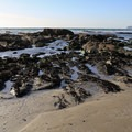 Tidepools at Sooes Beach.- Sooes Beach