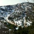 Avalanche chutes on Icicle Ridge.- Hatchery Creek