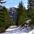 Heading down the Hatchery Creek Trail.- Hatchery Creek