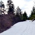 Heading uphill on the Hatchery Creek Trail.- Hatchery Creek