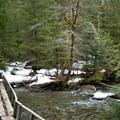 Small bridge crossing on the Barclay Lake Trail.- Barclay Lake Snowshoe