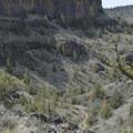 Chimney Rock Trail.- Chimney Rock Trail