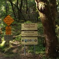 Camping available at Bullfrog Pond in Austin Creek State Recreation Area.- Armstrong Redwoods State Natural Reserve