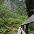 Quinault River Bridge.- Enchanted Valley