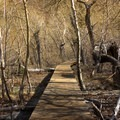 Boardwalk on the southern end of Convict Lake.- Convict Lake Loop Trail