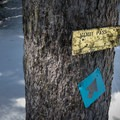 Trail marker at Nordic Pass.- Mount Catherine