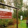 Hoh Oxbow Campground.- Hoh Oxbow Campground