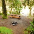 Typical campsite at Hoh Oxbow Campground.- Hoh Oxbow Campground