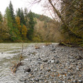 Hoh River from Hoh Oxbow Campground.- Hoh Oxbow Campground