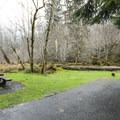 Hoh Campground.- Hoh Campground