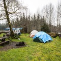 Typical campsite in Hoh Campground.- Hoh Campground