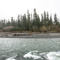 Hoh River adjacent from Hoh Campground.- Hoh Campground