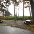 Group campsite in Kalaloch Campground.- Kalaloch Campground