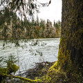 Queets River on the Sams River Loop Trail.- Sams River Loop Trail