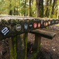 Beer bottle caps left by visitors to Queets Campground.- Queets Campground