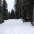 At the trailhead. White Road is only marked as an access road to Sand Lake Trail No. 60.- White Road