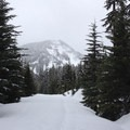 The first view into Goat Rocks Wilderness.- White Road