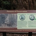 Interpretive signs along the trails in in Armstrong Redwoods State Natural Reserve.- Armstrong Redwoods State Natural Reserve