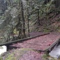 A bridge crosses South Creek before the trail charges up the ridge.- Eula Ridge Hike