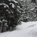 Some heavy spring snowfall.- Grace and Summit Lakes