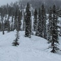 The Grace Lakes meadows.- Grace and Summit Lakes
