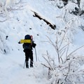 Snowshoeing up to Tom Dick and Harry.- Tom Dick + Harry Mountain