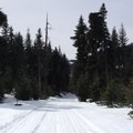 Starting out on Troll Bridge Loop.- Erling Stordahl Ski Trails