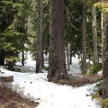 Spring conditions at the start.- White Pass to Sand Lake