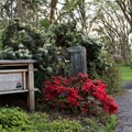 The main entrance to the Rhododendron Garden in Hendricks Park.- Hendricks Park