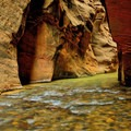 Reflective light gives the walls a soft glow.- The Narrows Hike