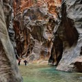 The Narrows has a steady stream of hikers.- The Narrows Hike