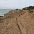 The Bluff Top Trail in Gualala Point River Park.- Gualala Point Regional Park