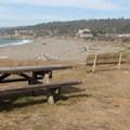 Picnic area above Gualala Point Beach.- Gualala Point Regional Park