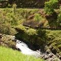 Upper Mosier Creek Falls in spring.- Mosier Creek Falls + Plateau Trail