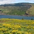 Coyote Wall across the Columbia River.- Mosier Creek Falls + Plateau Trail
