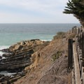 The Bluff Top Trail winds along Whale Watch Point.- Gualala Point Regional Park