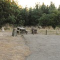 A typical campsite at the campground. - Gerstle Cove Campground