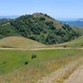 The exposed fire road on the Novato Hill Climb.- Novato Hill Climb