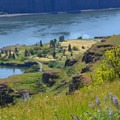 The Columbia River from the Lyle Cherry Orchard Trail.- Lyle Cherry Orchard