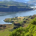 Looking west down the Columbia River Gorge.- Lyle Cherry Orchard