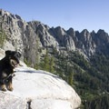 Leash regulations vary by season in the Sawtooth Wilderness.- Alpine + Sawtooth Lakes, Iron Creek Drainage