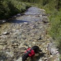 Alpine Creek provides welcome relief along the trail.- Alpine Creek Canyon