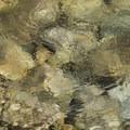 Crystal clear waters of Redfish Lake Creek- Redfish Lake Canyon
