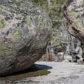 Granite boulder detail.- Redfish Lake Canyon