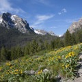 Grand Mogul ( 9,733') from the Bench Lakes Trail, a possible spur hike.- Redfish Lake Canyon