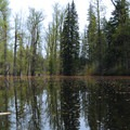 Canoe, kayak, or SUP through the lake and its channels.- Disappearing Lake