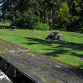 The day use picnic area.- Birch Bay State Park