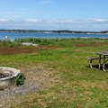 One of six day use fire circles.- Birch Bay State Park